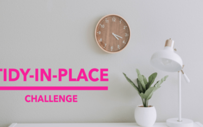 Tidy-in-Place Challenge
