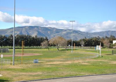 Vintage Meadows