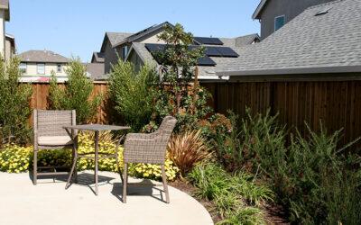 Beautifying Your Backyard